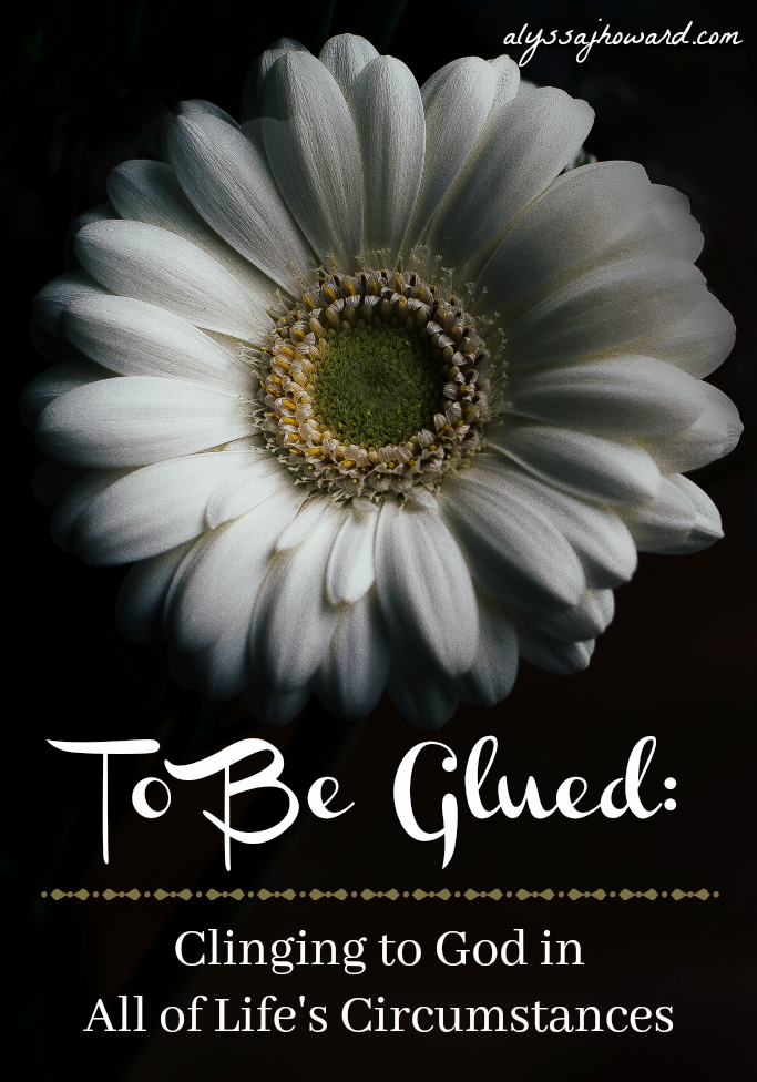 To Be Glued: Clinging to God in All of Life's Circumstances | alyssajhoward.com