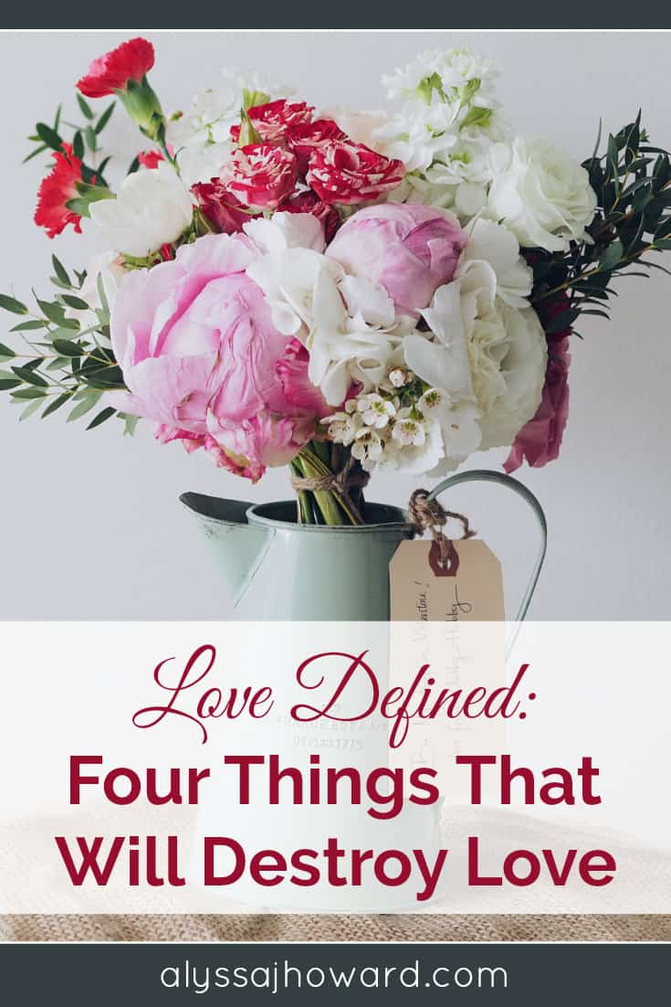 Love Defined: Four Things That Will Destroy Love | alyssajhoward.com