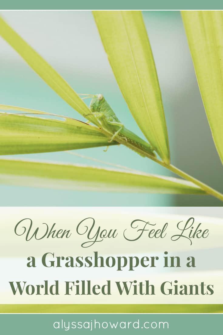 When You Feel like a Grasshopper in a World Filled with Giants | alyssajhoward.com