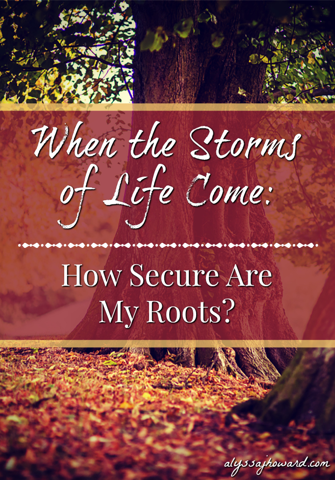 When the Storms of Life Come: How Secure Are My Roots? | alyssajhoward.com