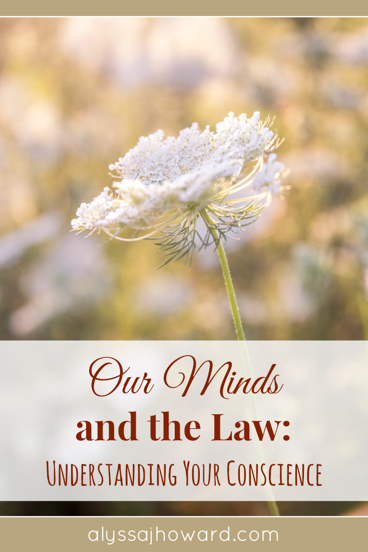 Our Minds and the Law: Understanding Your Conscience   alyssajhoward.com