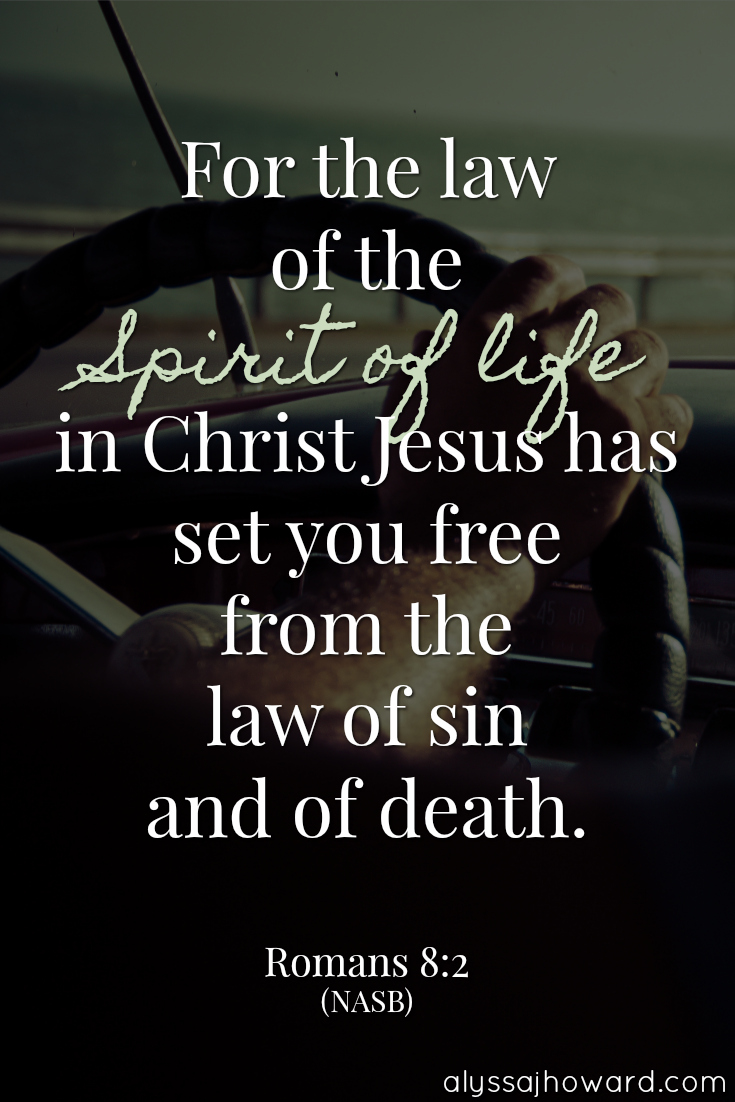 Sin Nature vs the Holy Spirit: Who's In Control?   alyssajhoward.com