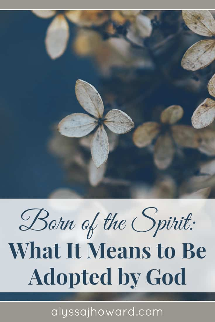 Born of the Spirit: What It Means to Be Adopted by God | alyssajhoward.com