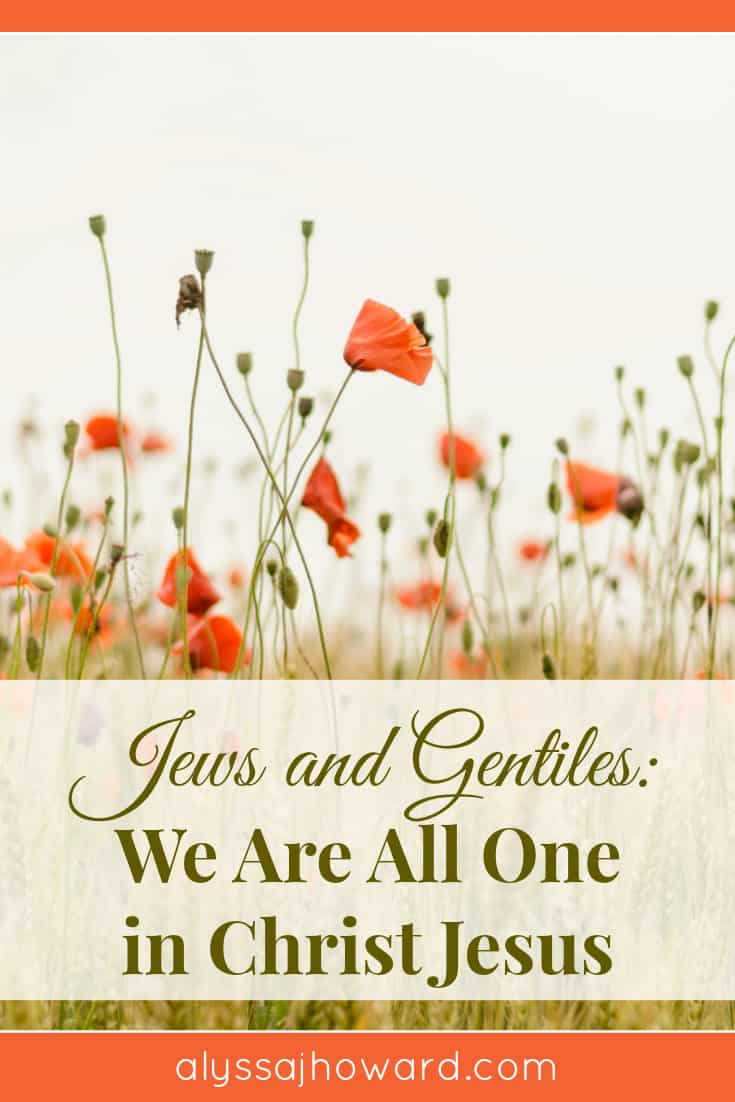 Jews and Gentiles: We Are All One in Christ Jesus | alyssajhoward.com