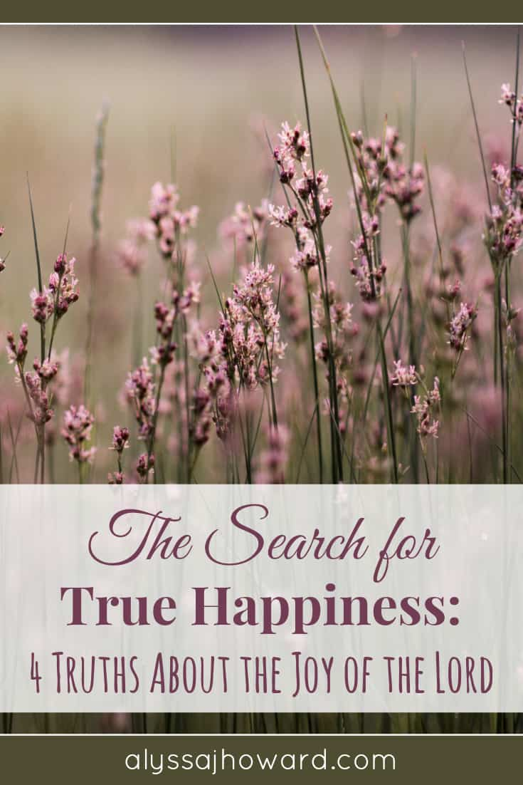 The Search for True Happiness: 4 Truths About the Joy of the Lord | alyssajhoward.com