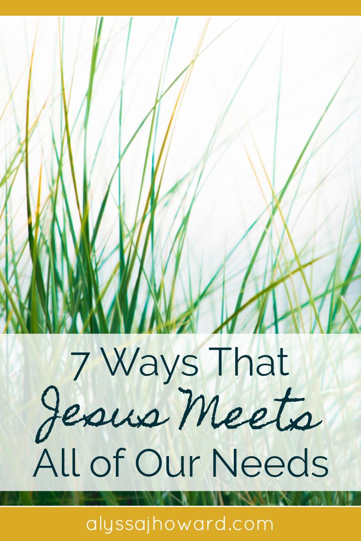 7 Ways That Jesus Meets All of Our Needs | alyssajhoward.com