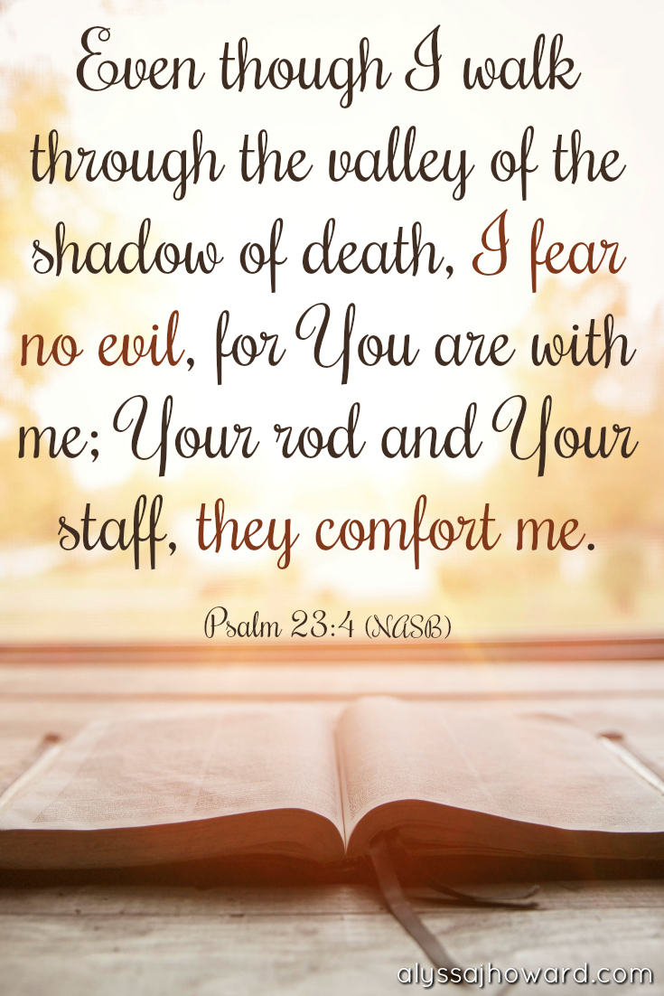 Lessons from Psalm 23: How to Walk in the Peace of God   alyssajhoward.com