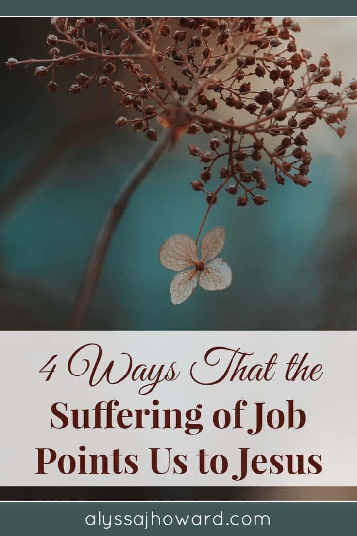 4 Ways That the Suffering of Job Points Us to Jesus | alyssajhoward.com