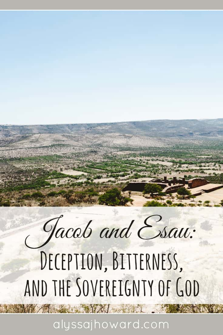 Jacob and Esau: Deception, Bitterness, and the Sovereignty of God | alyssajhoward.com