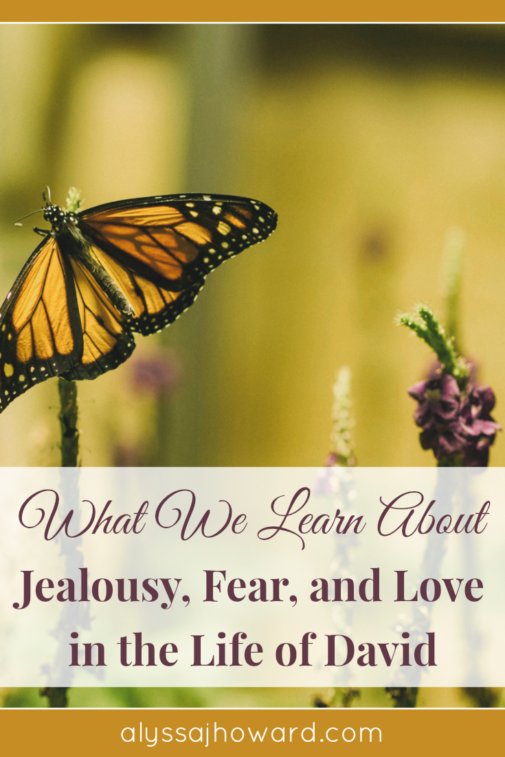What We Learn About Jealousy, Fear, and Love in the Life of David | alyssajhoward.com