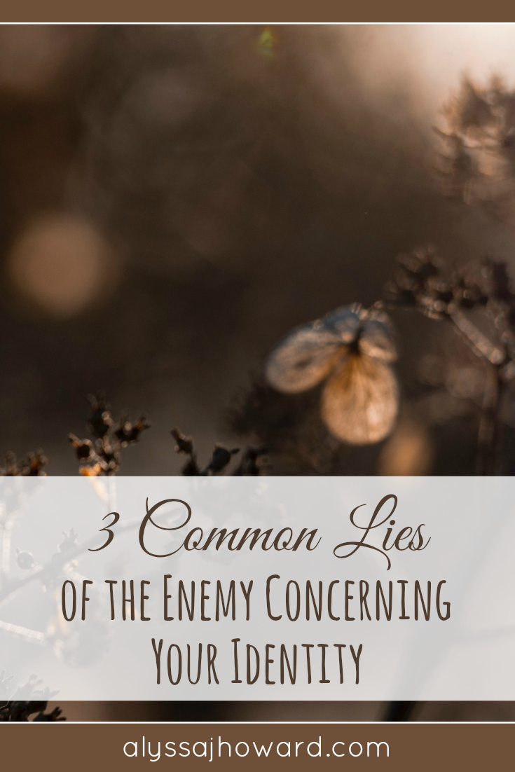 3 Common Lies of the Enemy Concerning Your Identity | alyssajhoward.com