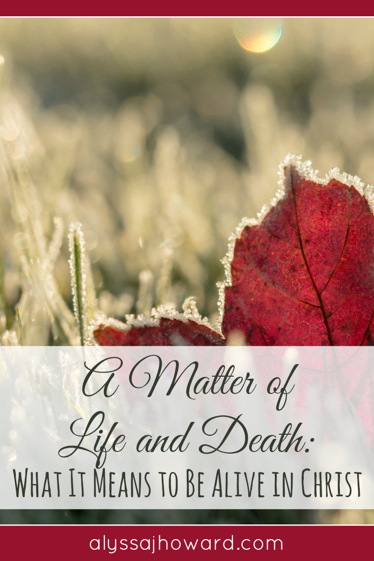 A Matter of Life and Death: What It Means to Be Alive in Christ | alyssajhoward.com