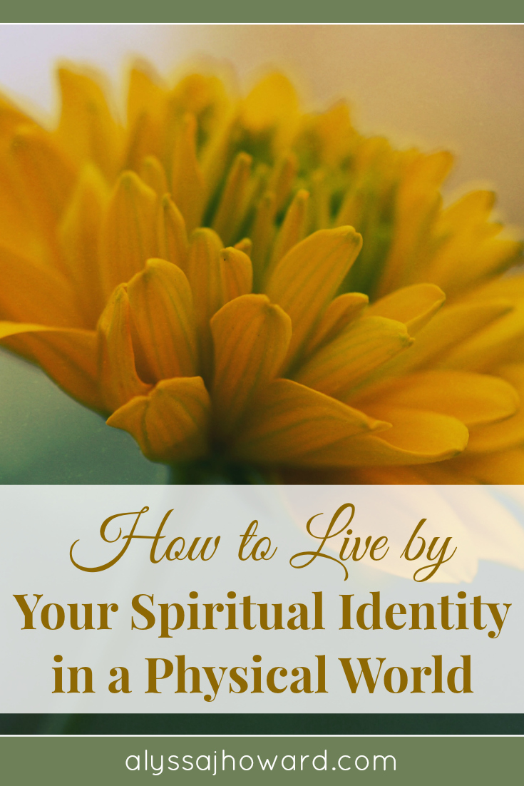How to Live by Your Spiritual Identity in a Physical World | alyssajhoward.com